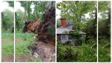 Cumberland, Perry Cos hit by straightline winds & microbursts, while NEPA hit by tornado