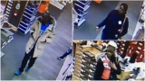 Troopers looking for three people who stole shoes from store in Ithaca Mall