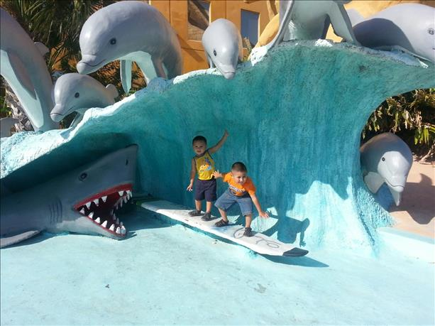 <a  href=&quot;http://share.valleycentral.com/Media/View/3397002&quot;>Surfing Cousins</a>