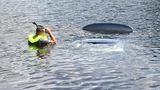 Man drives car into Macon pond, leaves uninjured