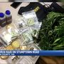 Marijuana plants, edibles seized after 9-month investigation