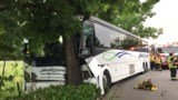Driver injured as shuttle bus crashes into tree in Tukwila