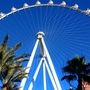 High Roller to go blue for Autism Awareness Month