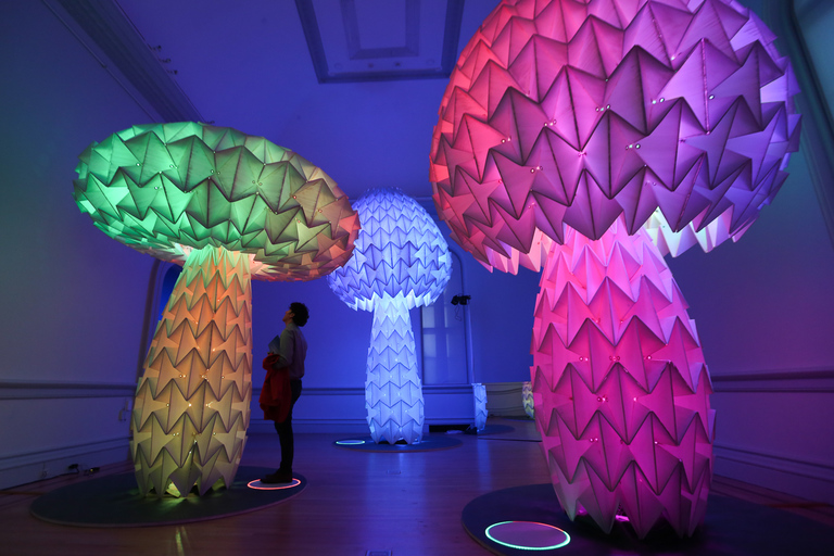 There's nothing quite like Burning Man, but visitors to the Renwick Gallery of the Smithsonian American Art Museum can now get their taste of the Playa. The disciplinary installation is meant for interaction. The exhibits include psychedelic-looking mushrooms that glow and respond to your steps and a room where visitors can lay back and watch digital butterflies float across the screen. There's no shortage of high-tech art too - there's a VR experience and a mobile movie theater inside the gallery. The exhibition opens on March 30 and will run until January 21, 2019. (Amanda Andrade-Rhoades/DC Refined)