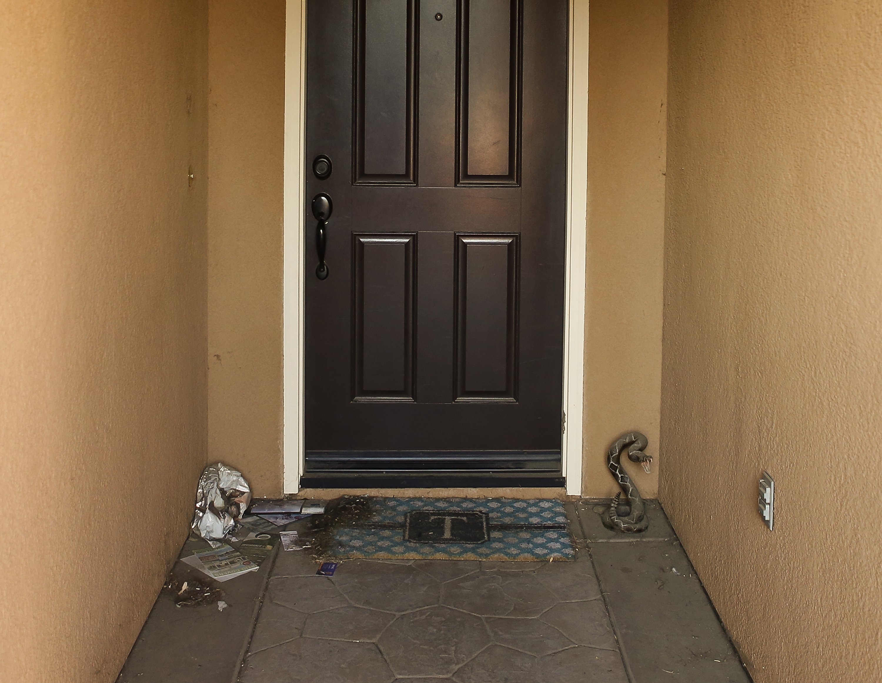 Trash and a fake rattle snake sculpture are seen on the front door of a home where police arrested a couple on Sunday accused of holding 13 children captive in Perris, Calif., Thursday, Jan. 18, 2018. The parents of 13 children and young adults have pleaded not guilty in a California court to numerous charges that they tortured and abused the siblings for years. David and Louise Turpin were each ordered held on $12 million bail after entering their pleas Thursday and were scheduled to return to court on Feb. 23. (AP Photo/Damian Dovarganes)