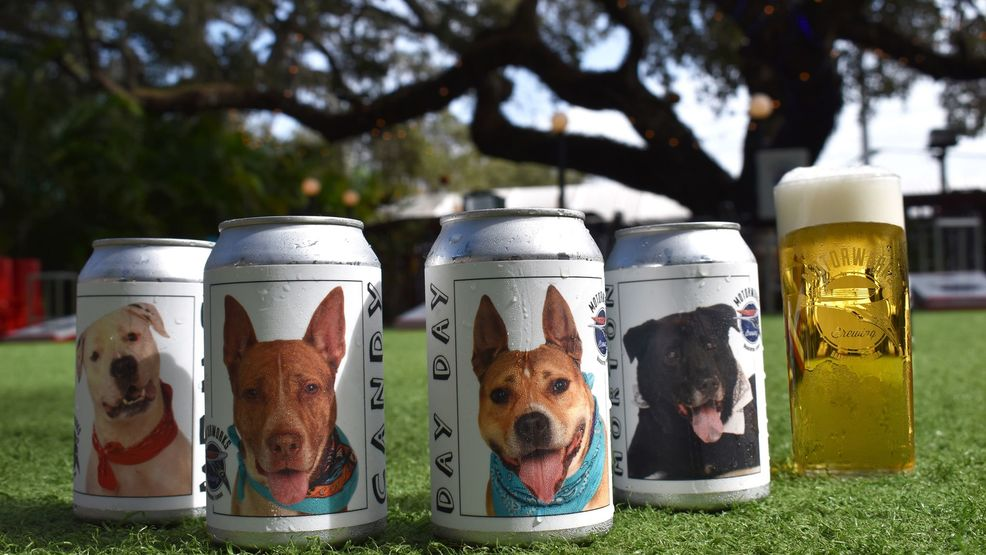 Adoptable Dog Cruiser 4 Pack_Motorworks Brewing.jpg