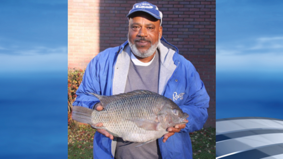 Madison man catches state record tilapia near gallatin wztv for Is tilapia a man made fish