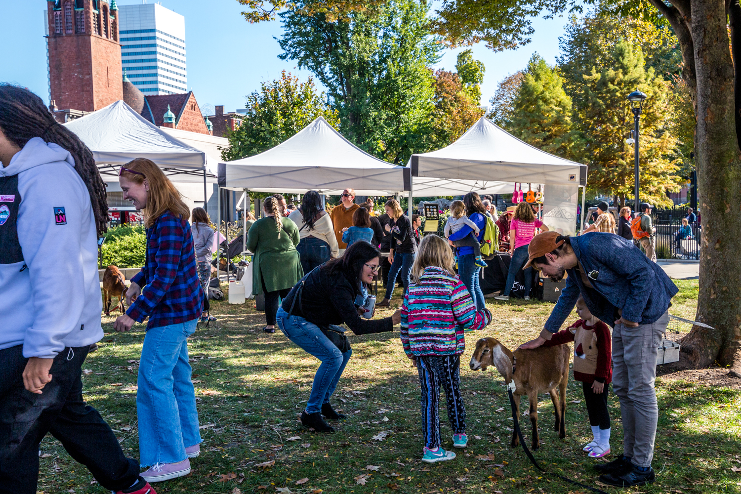 Fall Fest at Washington Park took place on the weekend of October 26-27. The family-friendly event was packed with pumpkins, seasonal activities, a petting zoo, live music, and dozens of local vendors selling crafts and homemade goods. / Image: Catherine Viox // Published: 10.28.19