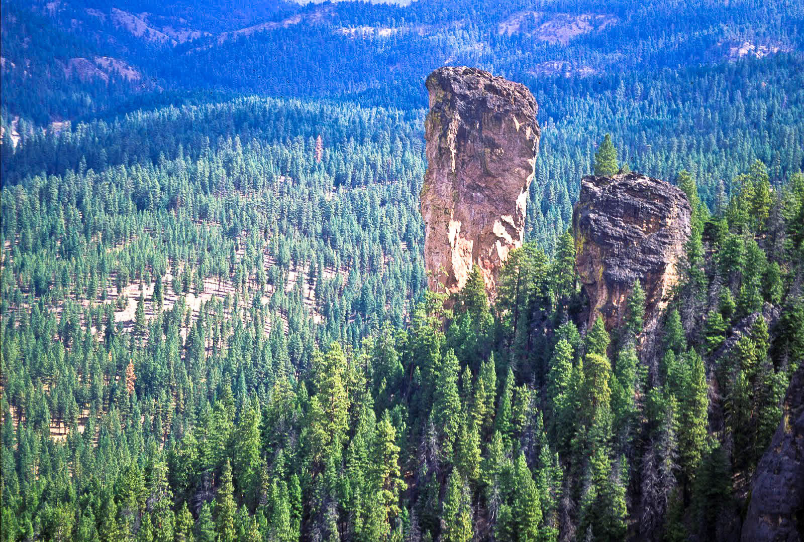 Steins Pillar in the Ochoco National Forest (USDA Forest Service)