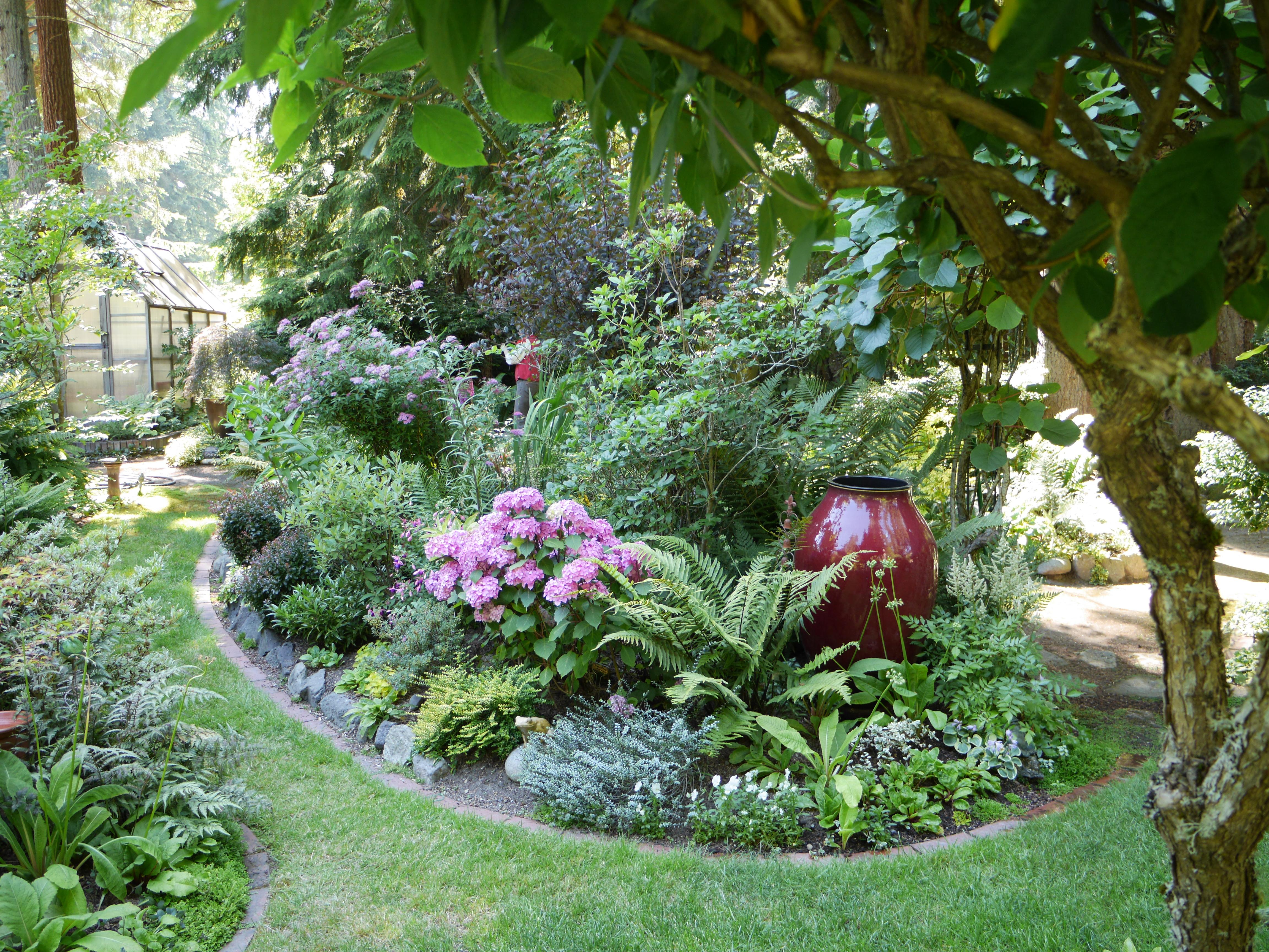 On Saturday, June 22, you are cordially invited to five private gardens in Bainbridge Island, through the Garden Conservancy Open Days program, 10 a.m. to 4 p.m. The Open Day is rain or shine, and no reservations are required. Admission is $10 per garden; children 12 and under are free. 9734 Manitou Place. Surrounded by waves of cedar pickets and an iron gate made by the owner, this private third-of-an-acre site sits at the end of a quiet cul-de-sac. Nestled among tall firs, vine maples, rhododendrons, azaleas, Viburnum, and magnolias, these gardens have been a work in progress for more than thirty years. Stroll the pathways, each leading to a different garden room, and you will discover seemingly endless groupings of Hosta, Helleborus, Hebes, barberries, Spirea, Farfugium, Euphorbia, and more than 100 varieties of ferns—the gardener's passion. These gardens have interest throughout the year with hardscape and water features.{ }(Image courtesy of Stephanie Werskey).