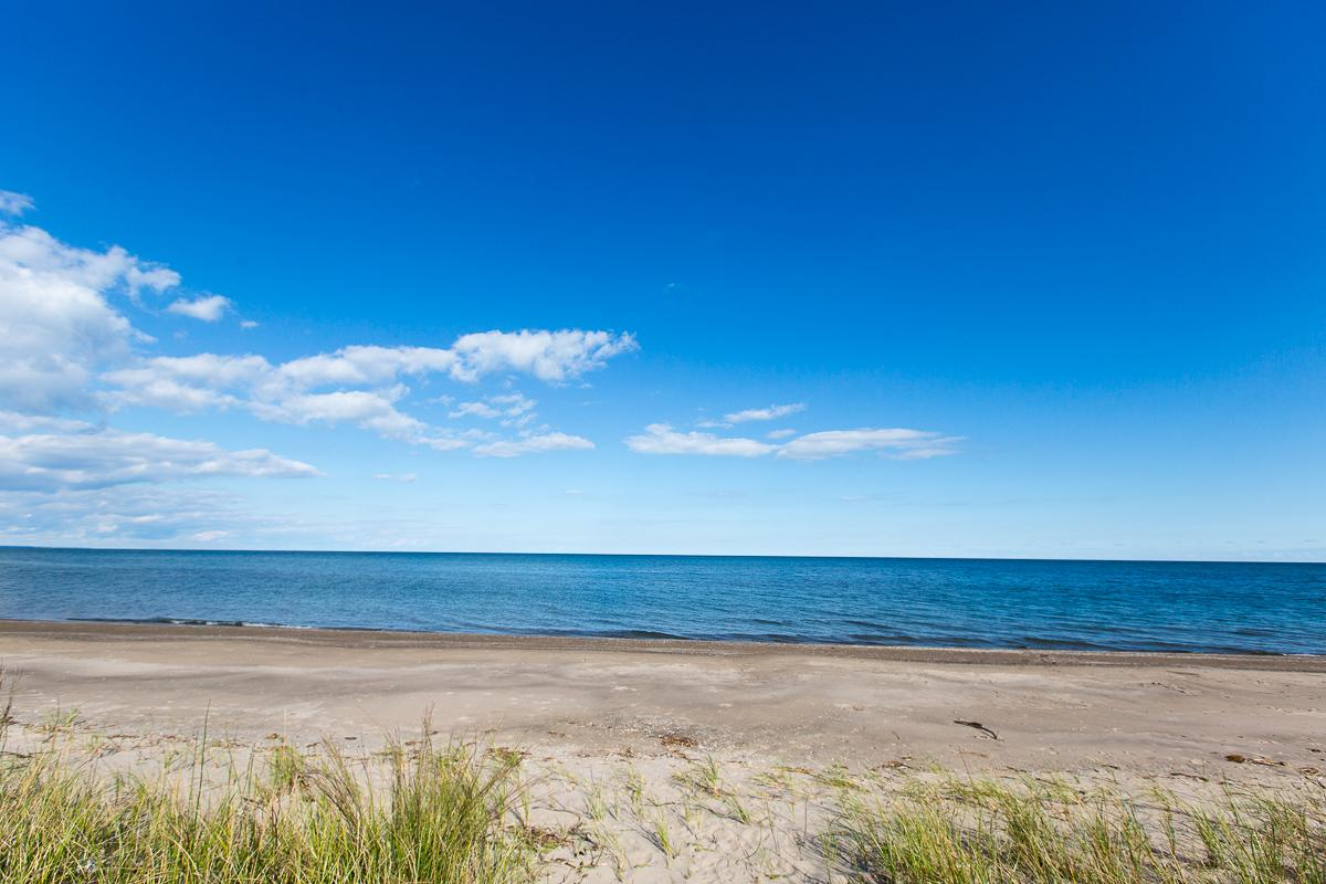 Rondeau Provincial Park is located in Ontario, Canada, on a sand spit extending into Lake Erie. It's about a five-and-a-half-hour drive from Cincinnati. [Image: Daniel Smyth Photography]