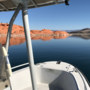Sand Hollow State Park dealing with growing danger within the water