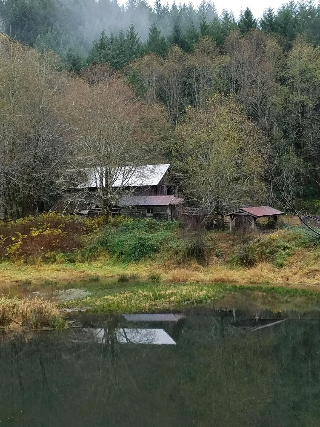 Old mill on the Alsea-Deadwood Highway (Hacek, ODOT/CC by 2.0)<p></p>