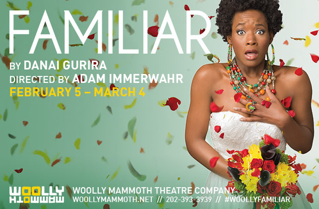FAMILIAR by Danai Gurira and directed by Adam Immerwahr (Image: Woolly Mammoth Theatre Company)