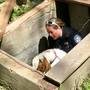 PHOTOS | Buxton Police rescue goats that fell into cellar bulkhead
