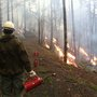 Firefighters busy fighting fire with fire: Burn now to protect Oregon communities later