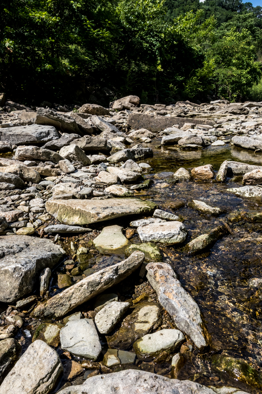 Other than scenic river sightings, trail-goers may also stumble upon a creek bed with some shallow swimming holes, as well as the Darby Lee Cemetery—the resting place for some of Delhi's earliest residents. Some of the graves date back over 150 years. / Image: Catherine Viox // Published: 8.7.20