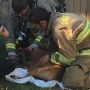 Family of five, dog displaced after house fire