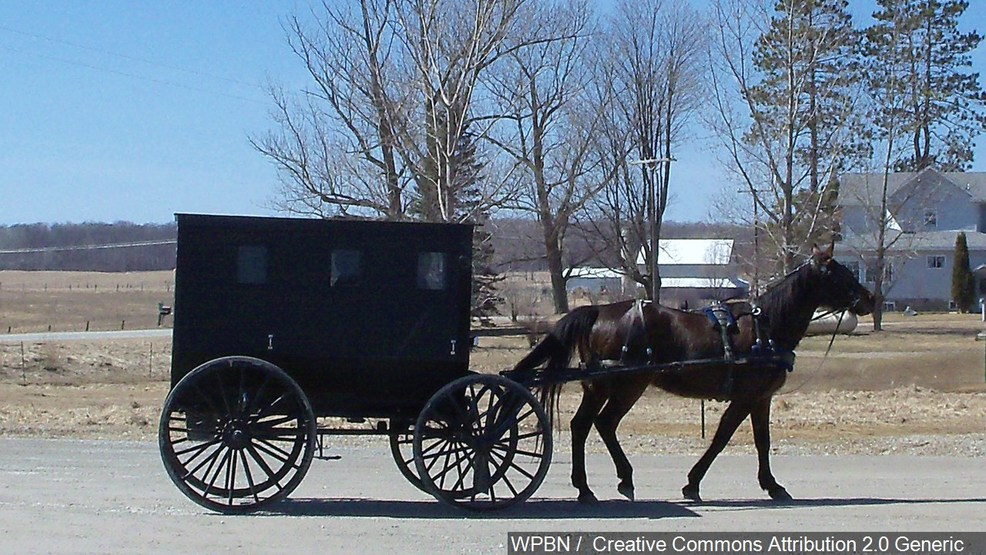 Car crashes into Amish buggy in Md.; 2 adults, 5 children flown to hospital