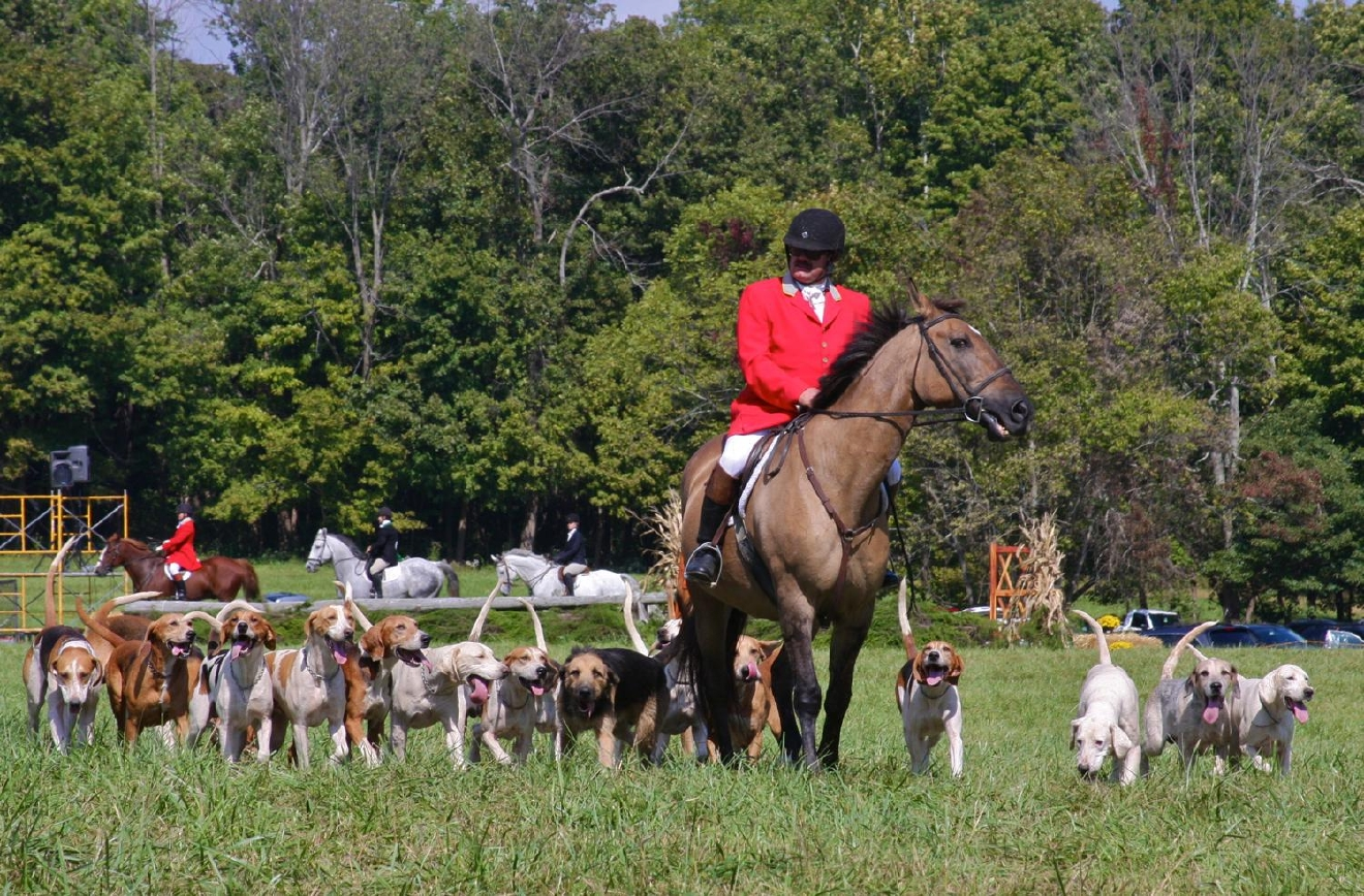 The 76th annual Camargo Hunter Trials took place on Saturday, Oct. 1 at Clippinger Field in Indian Hill. / Image: Molly Paz