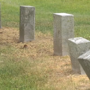 Families furious after discovering damage to plant life around tombstones in Bloomingdale