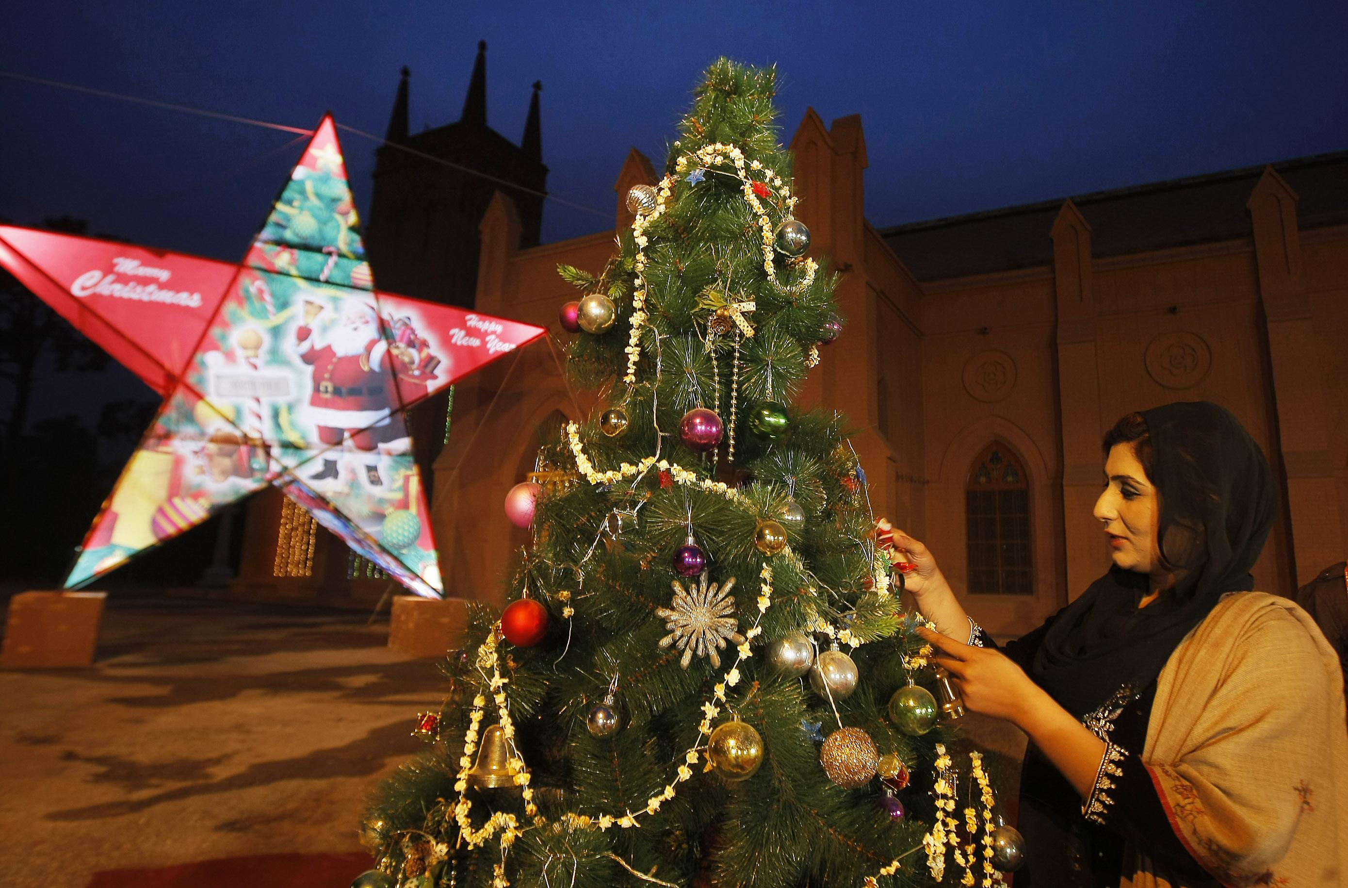 christmas trees    world kval