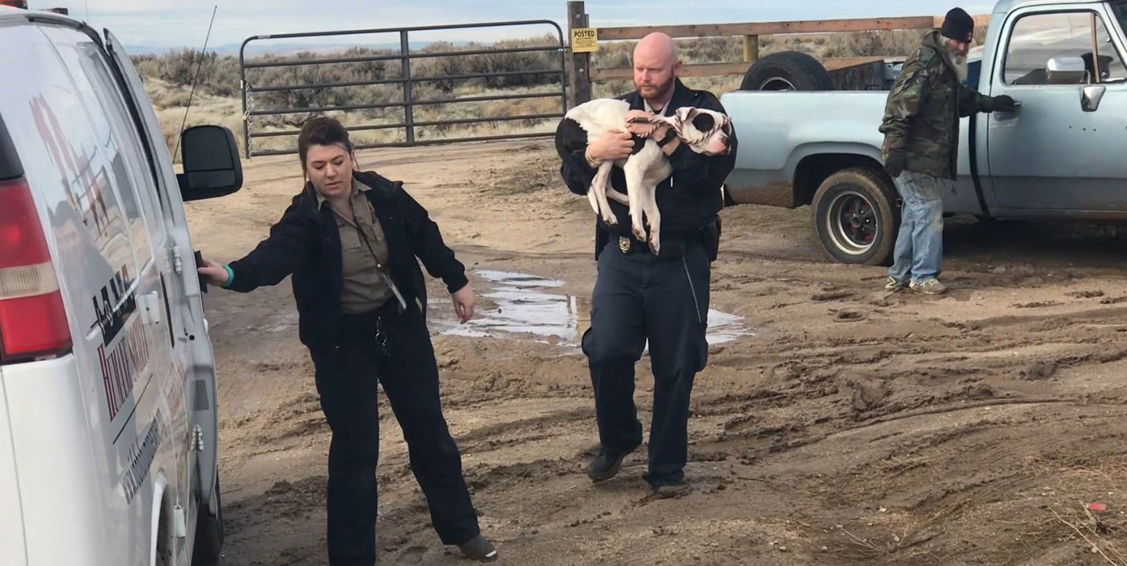 The Idaho Humane Society says Apollo, a white terrier mix ran away after a rollover accident on I-84 near the Stage Stop in Boise just after Christmas. (Idaho Humane Society)
