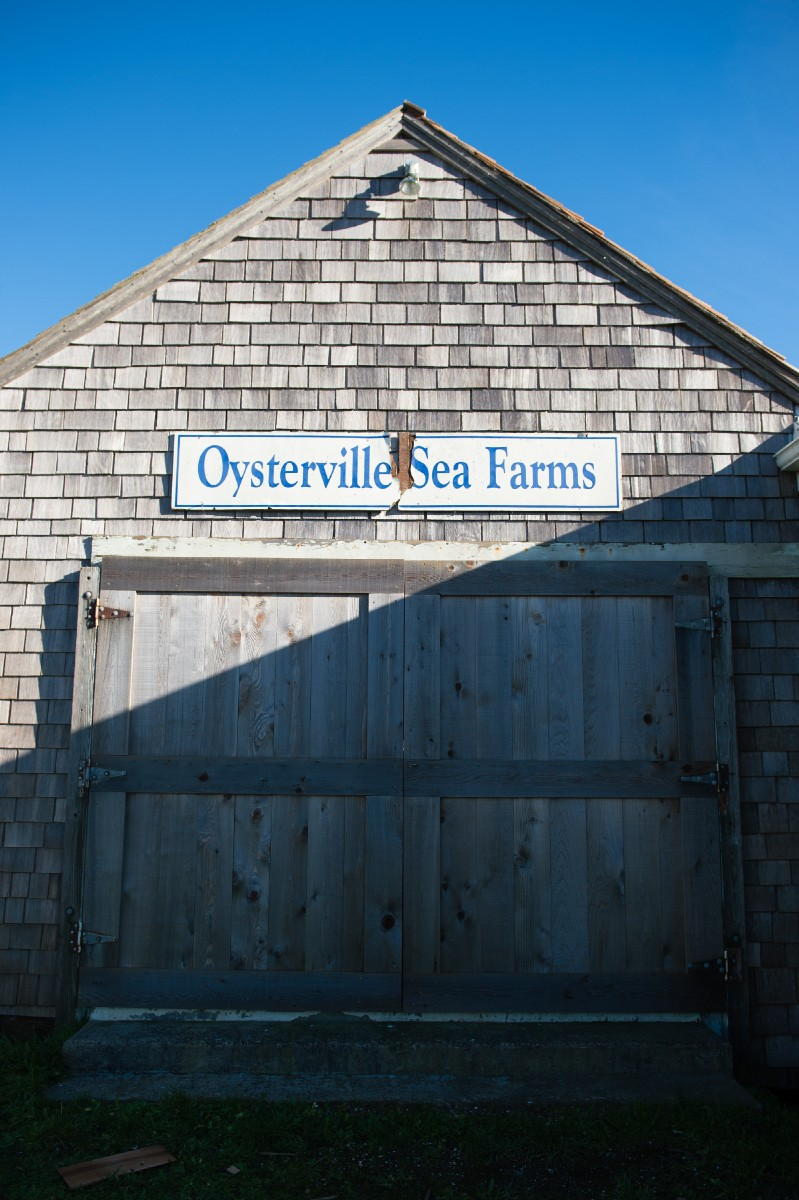 Oysterville Sea Farms is situated along Willapa Bay and carries everything from Cranny Cranberry Butter to breading so good you could practically bread a rock and it would be tasty-- though shellfish are definitely recommended. All proceeds at the shop go toward restoring and preserving the last oyster cannery in Oysterville, run by Dan Driscoll. Fun fact-- Oysterville is home to the oldest continuously running post office in the state. A designated national historic district, strolling through Oysterville feels a little like stepping back in time. (Image: Chona Kasinger / Seattle Refined)