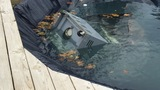 Wind damage in Kewaunee includes gas grill in pool