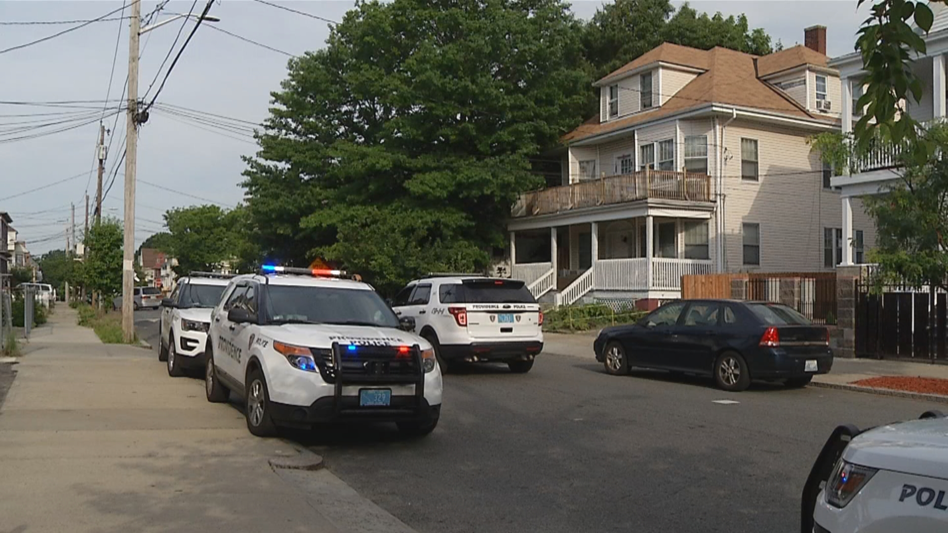 Providence animal control seized a dog that police said attacked a woman on Lenox Avenue, Monday, June 18, 2018. (WJAR)