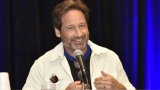 David Duchovny left naked after 'medicinal chocolate' overdose