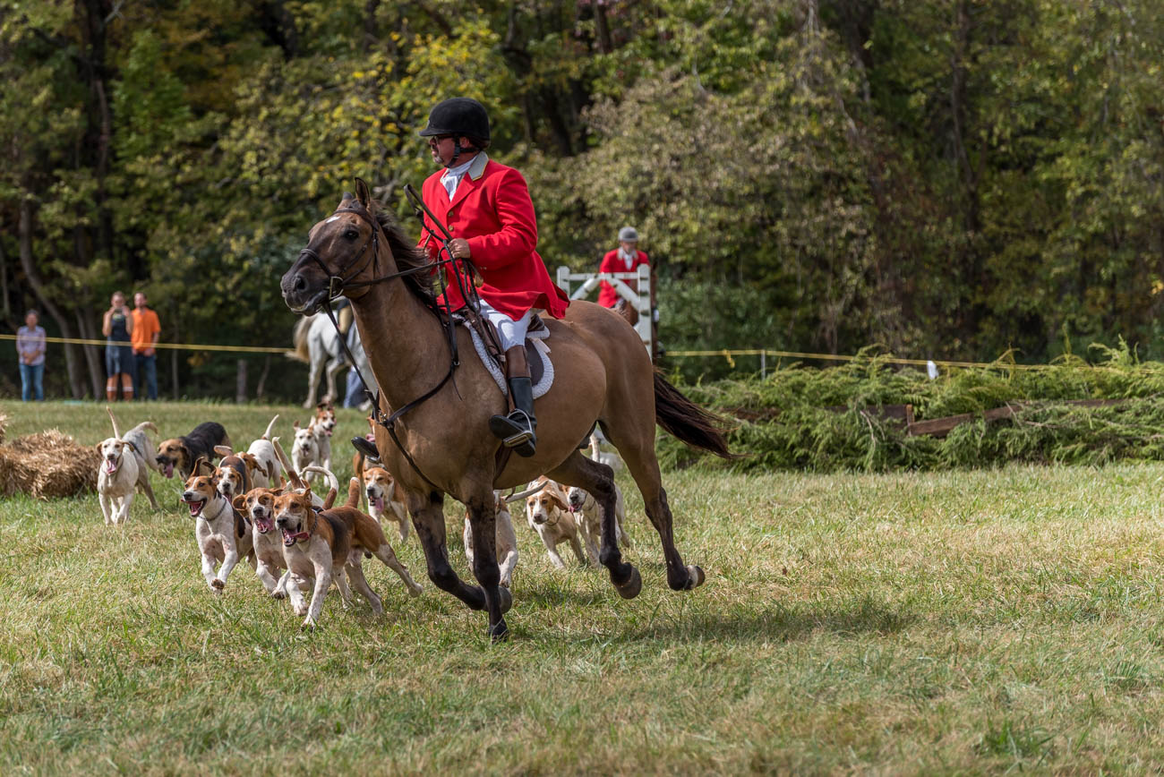 Pictured: The Camargo Hunter Trials, which took place on Saturday, October 7 / Image: Mike Menke // Published: 12.31.17