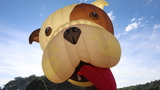 GALLERY | UK's 40th annual Bristol Balloon Festival