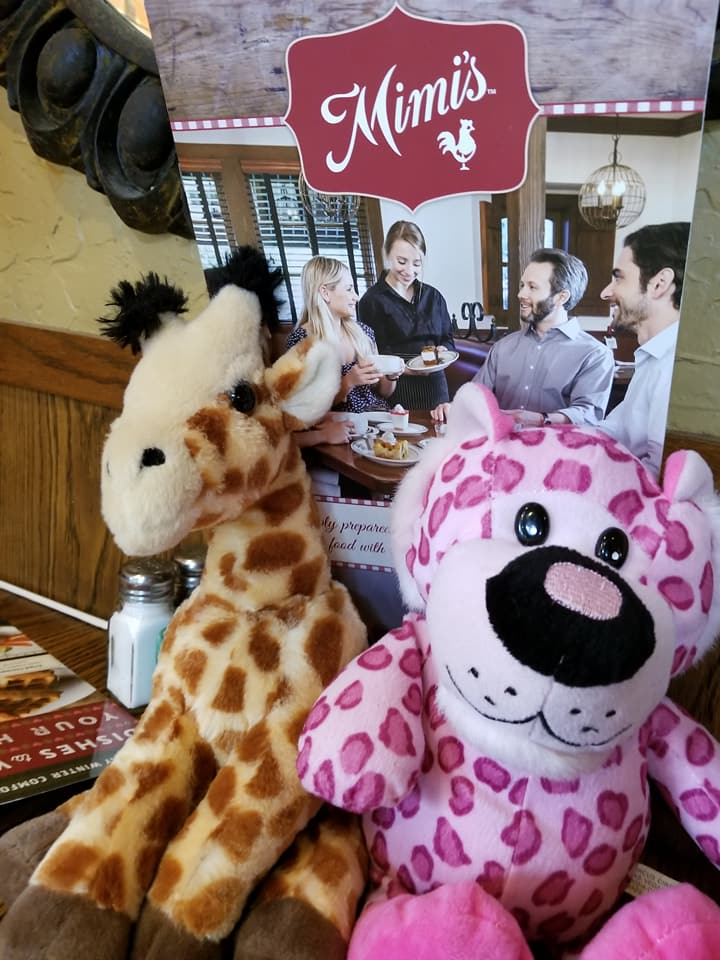 Clovis woman on a mission to reunite stuffed animals with their 'best friend.' Getting lunch with friends. (Brenda Bibb Kirby via KMPH)<p></p>