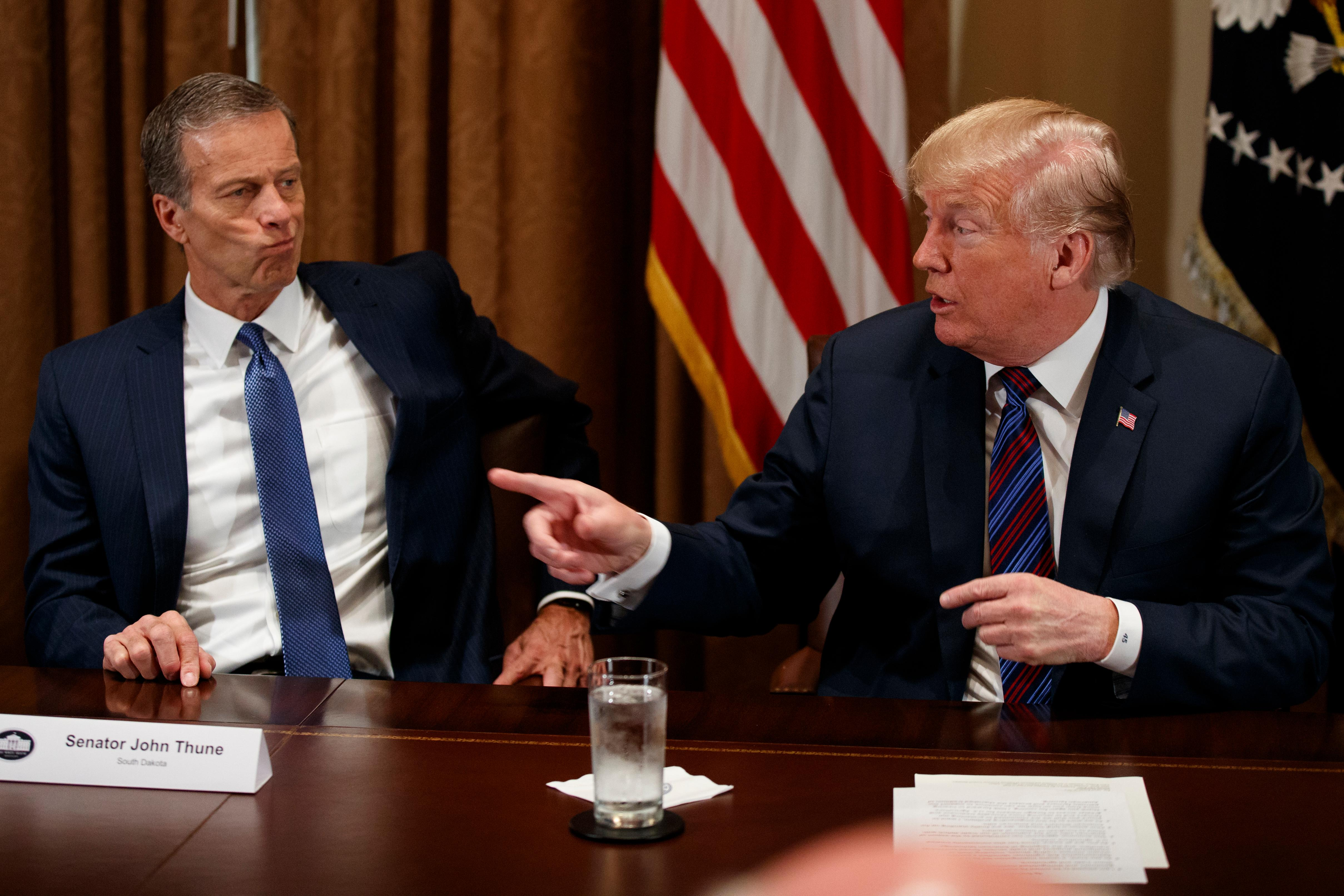 Sen. John Thune, R-S.D., listens as President Donald Trump speaks during a meeting with governors and lawmakers in the Cabinet Room of the White House, Thursday, April 12, 2018, in Washington. (AP Photo/Evan Vucci)