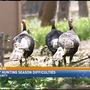 Officials say turkey hunting is getting more difficult