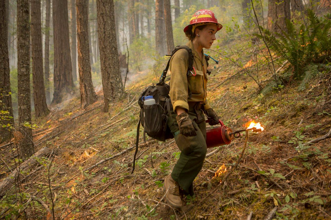 Umpqua North Complex low and slow burn operation with Vale Hotshots, Umpqua NF Eng-65 and holding resources made up of various engines and Imperial Forestry Crew on Friday, Sept. 1, 2017, in the Umpqua National Forest. (Kari Greer/U.S. Forest Service)