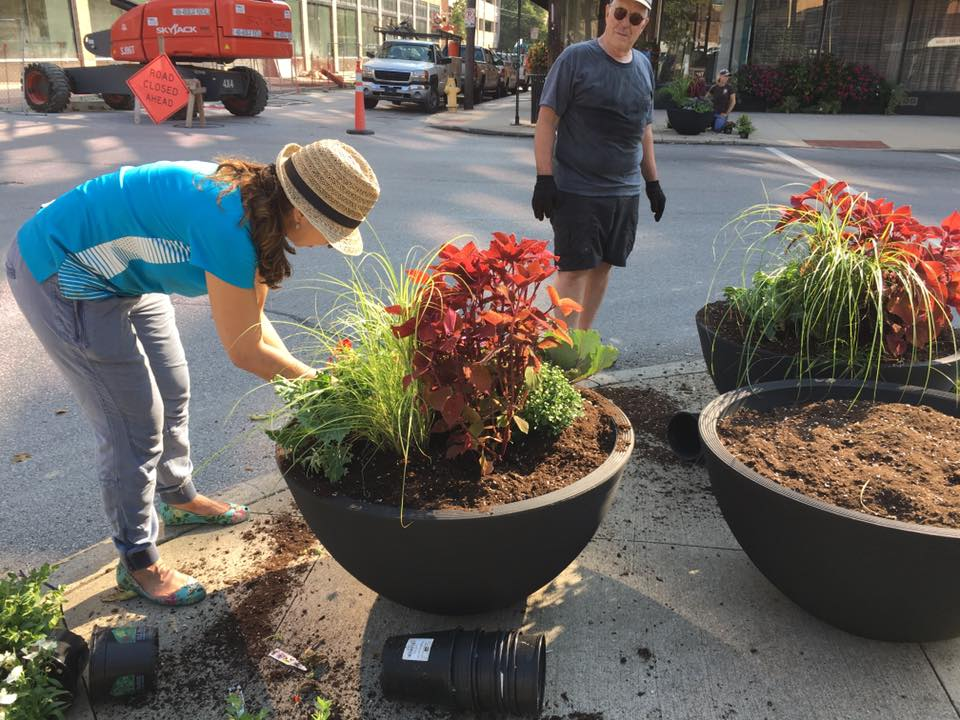 Flowers on Madison: flower planters along Madison Avenue that were planted and maintained by Renaissance Covington and their partners. / Image courtesy of Renaissance Covington // Published: 1.24.18