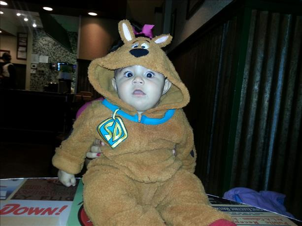<a  href=&quot;http://share.valleycentral.com/media/4064017&quot;>Scooby Doo</a>