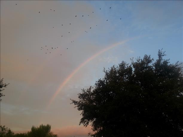 <a  href=&quot;http://share.valleycentral.com/media/3794316&quot;>Rio Hondo Double Rainbow</a>