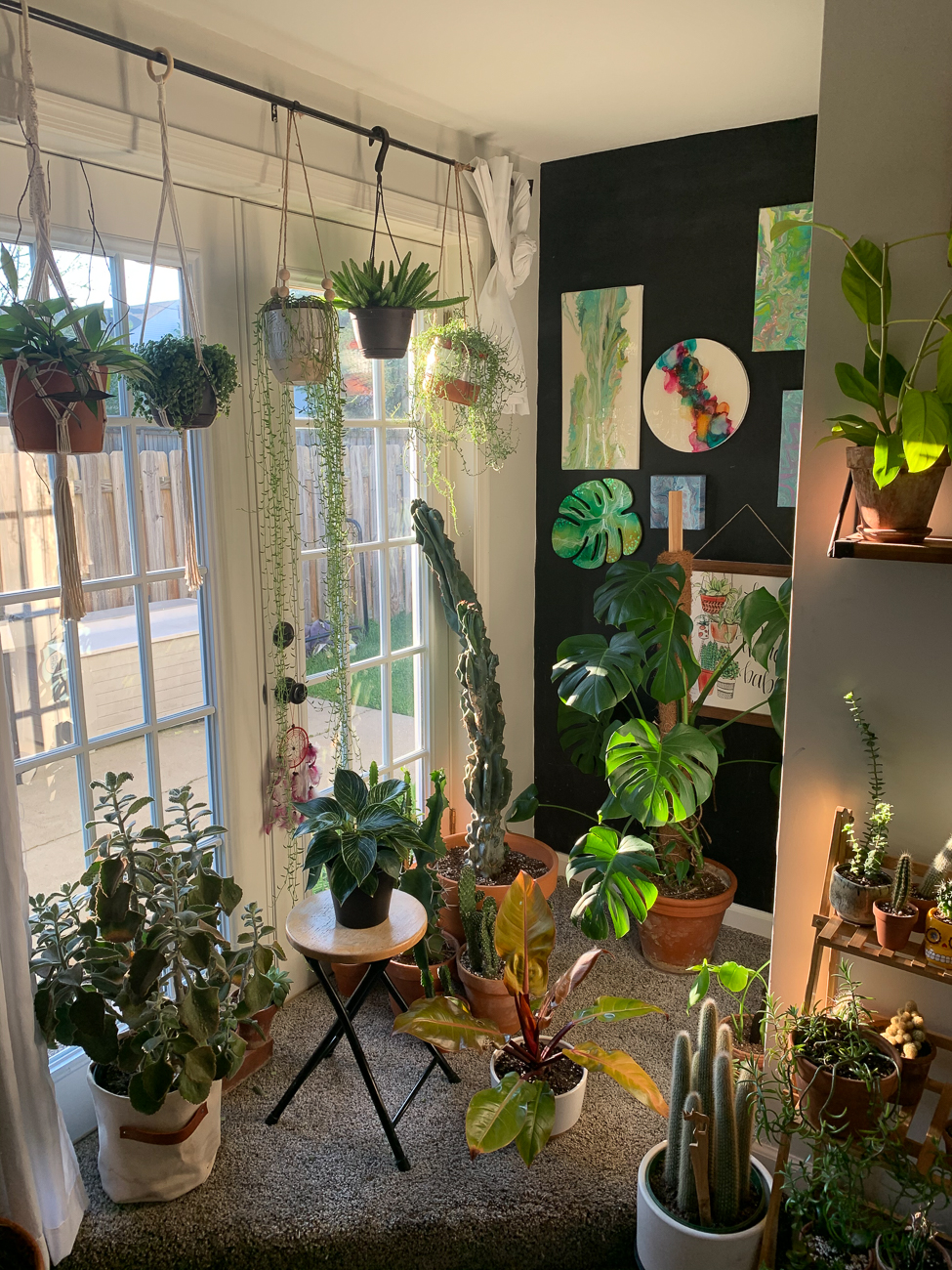 "Abby McFall (IG: @midwesteden) / ""I've always been a major tree hugger. After falling madly in love with houseplants a few years ago, I find myself living in my own personal Eden. Plants are my passion, and have truly taken over my room! I hope to continue growing my collection, and sharing my love of plants!"" / Image courtesy of Abby McFall // Published: 6.13.20"