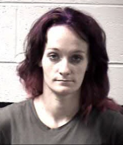 Denna Marie Burgess   W/F 31 yoa 5'7 163lbs Black Hair Blue Eyes Wanted For: Obtain property false pretense, breaking and or entering (F), FTA DWLR, 2cts Mis Larceny