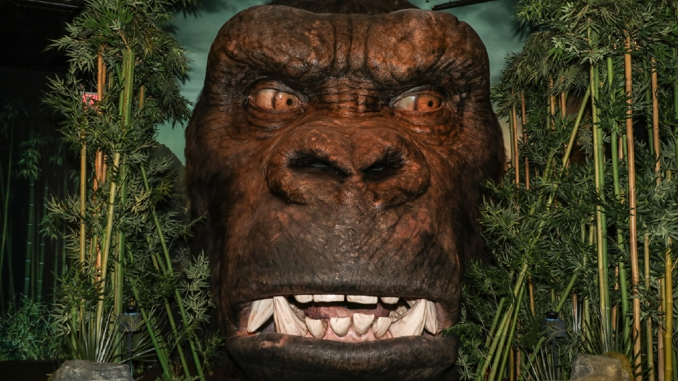 PHOTOS: 'Kong: Skull Island' experience launches at Madame Tussauds New York