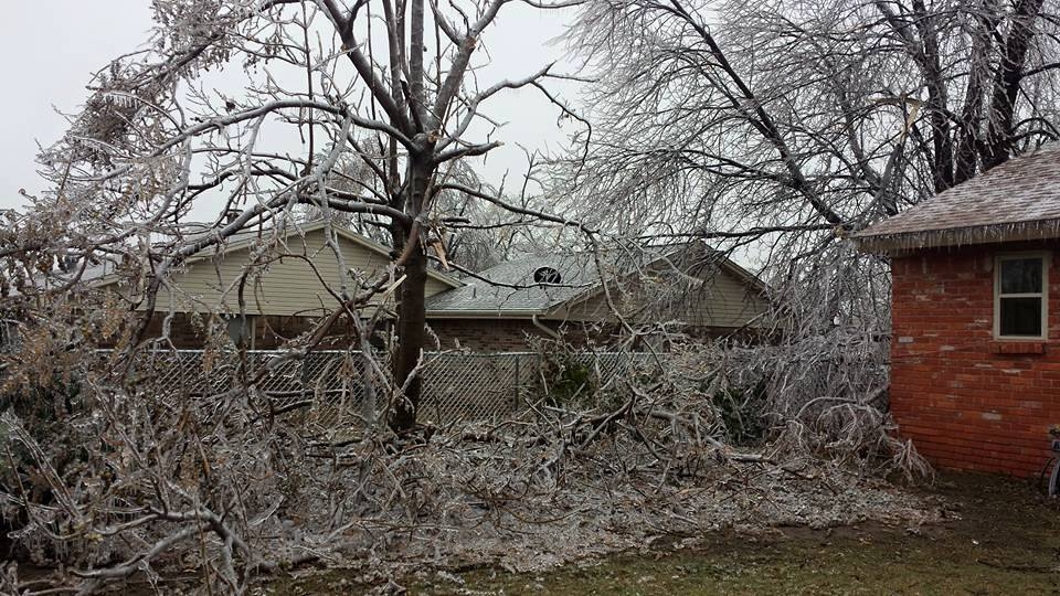 Some ice storm pictures of my house, gonna be fun cleaning up. from Shaina Miller