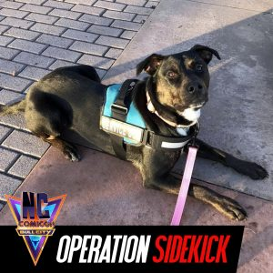 Operation Sidekick 3